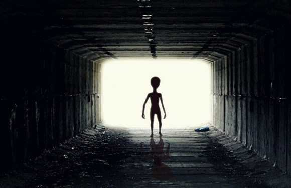 İnsandışı bir yaşam formu bulunmuş olabilir!